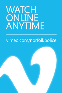 Watch online anytime